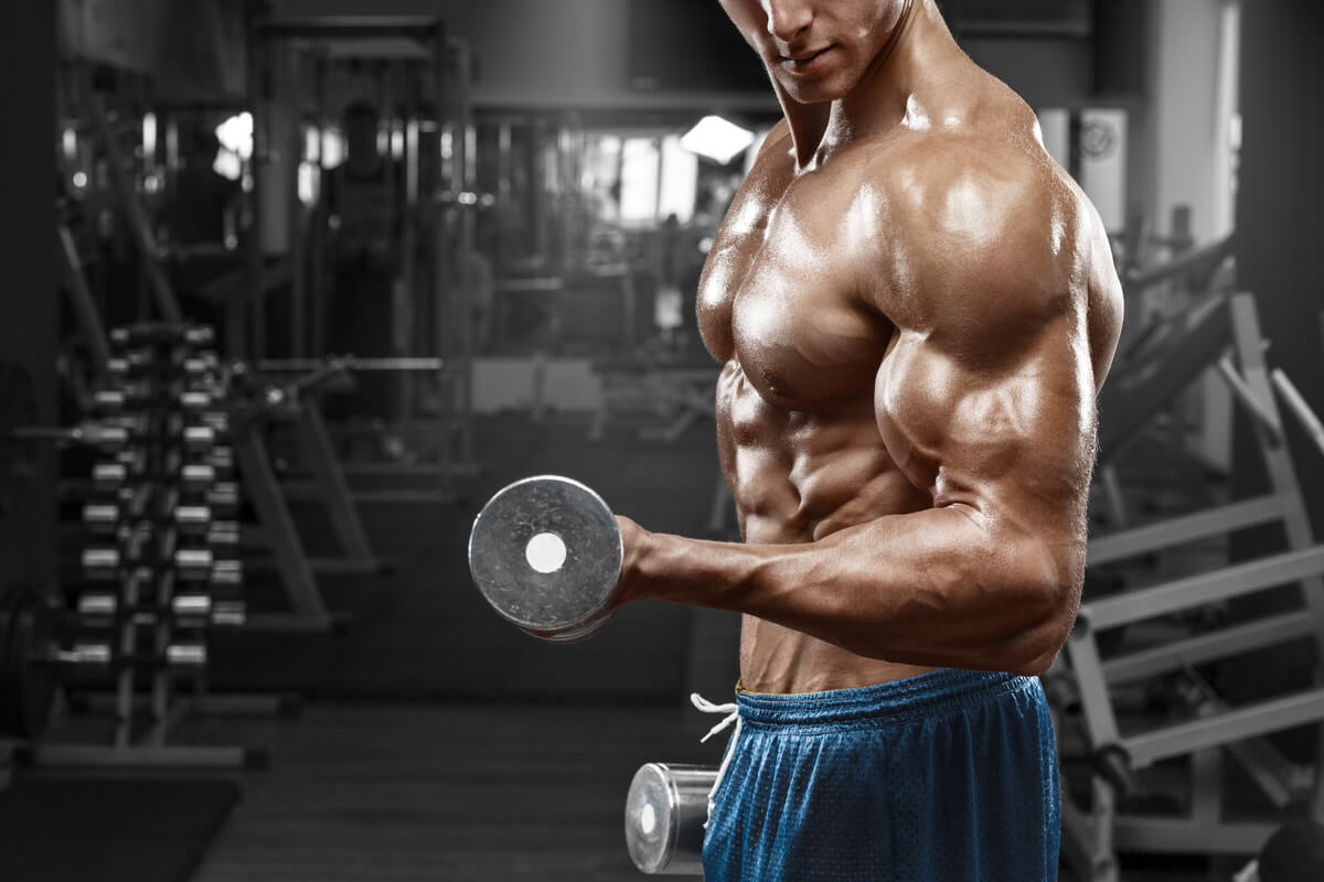 Sun's Out, Guns Out! - Best Arm Day Workout Routines