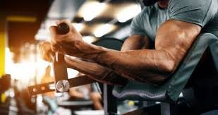 Catabolic Combat - How To Fight Off  Muscle Catabolism